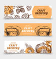doodle sketch brewery vintage banners with vector image