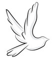 flying bird on white background vector image vector image