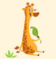 funny cartoon giraffe eating a leaf vector image vector image