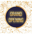 grand opening lettering sparkling banner with vector image