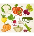 Vegetables mix Organic food farm food vector image