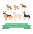 Dogs breed set with french bulldog cockapoo beagle vector image