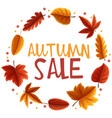 autumn sale poster with orange leaves vector image vector image