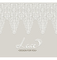 Beautiful lace background vector image
