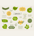 collection green labels and badges for organic vector image vector image