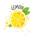 hand draw lemon half and vector image vector image