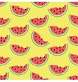 Watermelon in summer vector image