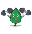 fitness mint leaves character cartoon vector image vector image