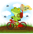 frog on a bike catches flies vector image vector image