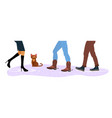homeless cat between men and women feet vector image vector image