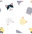 nice cats pattern vector image