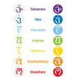 set of color icons with names of chakras vector image vector image