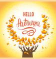 autumn yellow tree vector image vector image