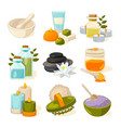 cartoon pictures of different symbols of spa or vector image