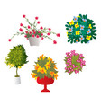 cheerful flowers vector image