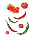 cherry tomatoes hot chili peppers vector image