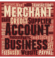 Merchant Accounts For Beginners text background vector image vector image