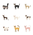 Pet icons set cartoon style vector image vector image