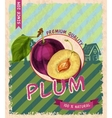 Plum retro poster vector image vector image