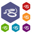 rattlesnake icons hexahedron vector image vector image