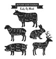 butcher guide cuts meat diagram vector image