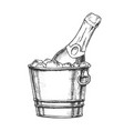 champagne bottle in bucketful with ice ink vector image