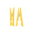 clothes pegs in flat style vector image