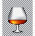 Glass Collector 50 year-old French Cognac on vector image vector image