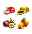 mature tropical fruits set vector image vector image