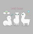 set beautiful cute llama vector image