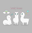 set of beautiful cute llama vector image