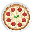 a pepperoni pizza on plate vector image vector image