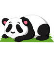 cartoon panda sleeping isolated on white backgroun vector image vector image