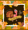 cartoon thanksgiving turkey character holding hat vector image vector image