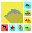design of sea and animal symbol set of sea vector image
