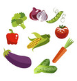 set vegetables isolated on white background in vector image