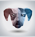 abstract polygonal tirangle animal dog hipster vector image vector image