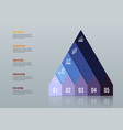 business growth 5 step infographics option vector image vector image