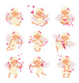 flat set of adorable cupid in different vector image