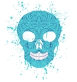 grunge skull on white background vector image
