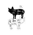scheme and guide - pork vintage typographic vector image vector image