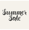 Summer Sale Handwritten Lettering vector image