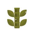 bamboo tree botanical nature japan icon vector image