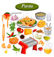 food and spice ingredient for pasta vector image