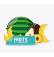 Fruit icon design vector image vector image