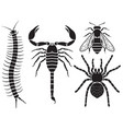 poisonous insects set vector image vector image