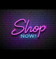 shop now neon light collections design vector image vector image