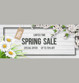 spring sale frame chamomile wood blooming branch vector image vector image