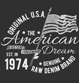 t-shirt typography design usa printing graphics vector image vector image