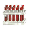 test tubes with blood samples in holder vector image